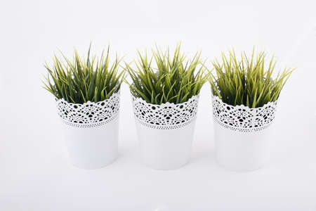 decorative balconies: Three pots of green plants Stock Photo