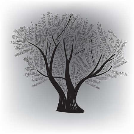 genealogical: �rbol original para diversas aplicaciones