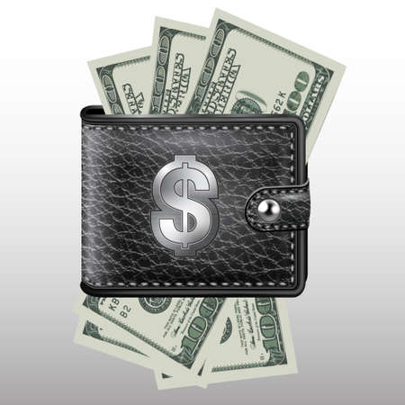 Wallet , dollar USA  Leather and metal structure Stock Vector - 21822193