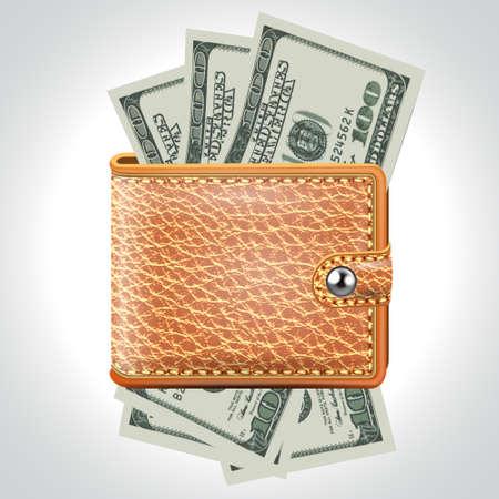 Brown  Wallet  Dollar USA  Vector Vector