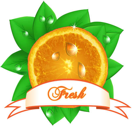 Juicy fresh orange with leaves, drops  and ribbon on white background. Vector Illustration