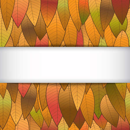Autumn background from leaves, with a white strip for an inscription. The vector image for your successful projects