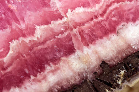 Rhodochrosite MNCO3. Pink manganese carbonate mineral. Macro. Beautiful fantastic background  for successful business projects and other Your variant.