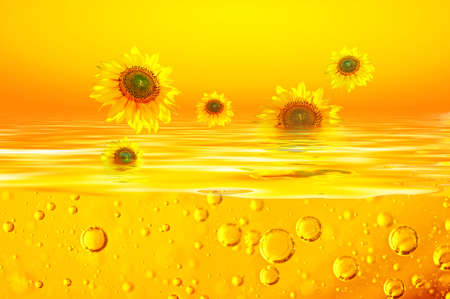 Sunflower oil is with Sunflowers of on surfaces of a yellow liquid and air bubbles in an orange liquid. Background for sunflower oil. Stock Photo