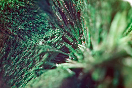 Green beautiful background of natural mineral Malachite. Macro. Banque d'images