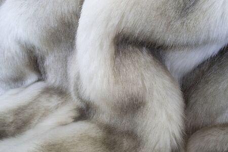 creative idea for background. real mink fur closeup Banque d'images - 148162998