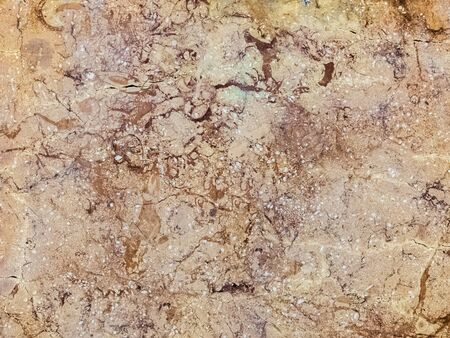 creative idea for background. texture of beige marble closeup