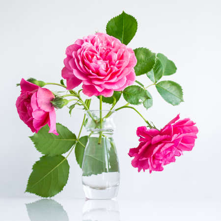romantic delicate bouquet of pink garden roses on white background