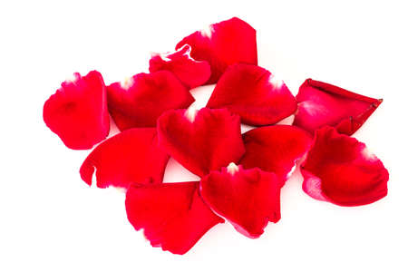 scattered in heart shaped: Petals of roses on a white background