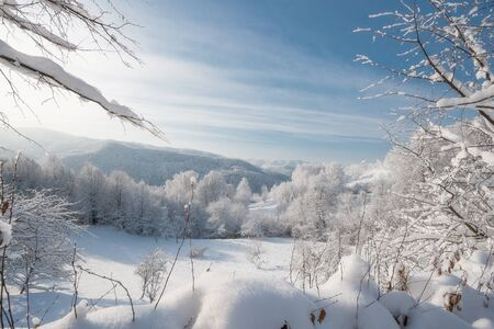 very cold: Cold winter day, very sunny. Karpaty Ukraine