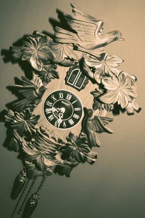 cuckoo clock: Una foto de un reloj de cuco vendimia