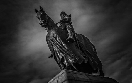 robert bruce: King Robert the Bruce of Scotland