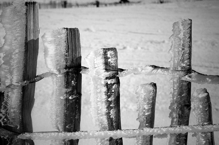 icy: Icy fence Stock Photo