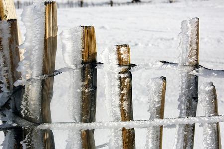 freezing: Freezing Fence Stock Photo