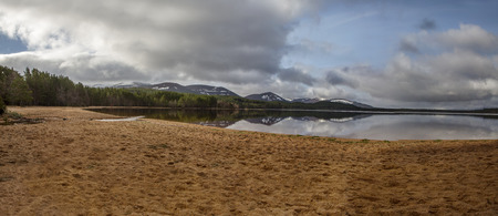 beach panorama: Loch Morlich beach panorama Stock Photo