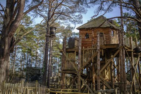 Tree house in a forrest