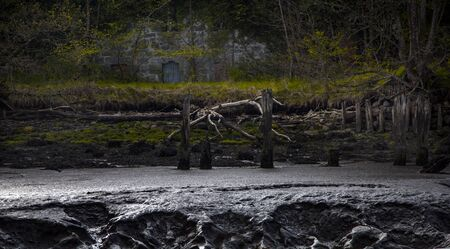 forth: Creepy house on the River Forth Stock Photo