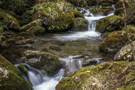 hydrological: Alva Glen River in Alva Scotland Stock Photo