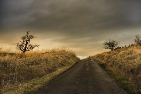 Sunrise in Scottish road