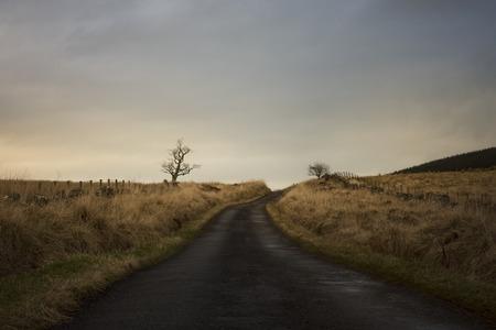 Empty road at dusk