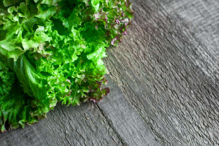 Bunch of fresh green salad on wooden table. Copy space. Stock Photo