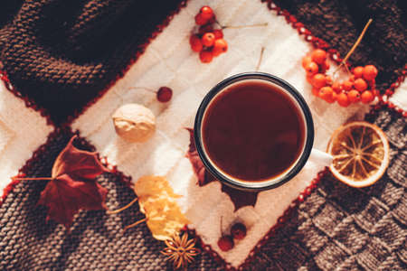 Hot steaming cup of coffee or tea with fall leaves and spices on a warm plaid on a bright Sunny day. Autumn mood. Top view. 免版税图像