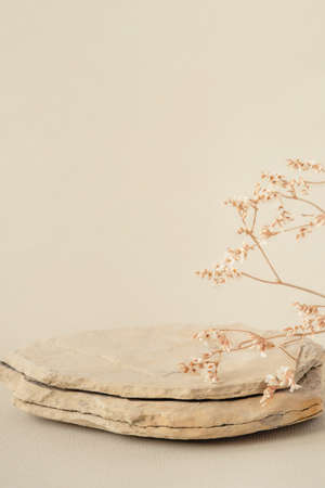 Background for cosmetic products of natural beige color. Stone podium and dry flower on a white background. Front view.