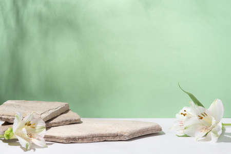 Background for cosmetic products of natural green color. Stone podium with white flowers. Front view.