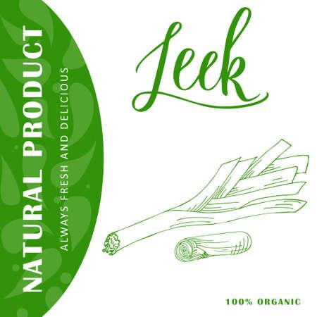 leek: Vegetable food banner. Leek sketch. Organic food poster. Vector illustration Illustration