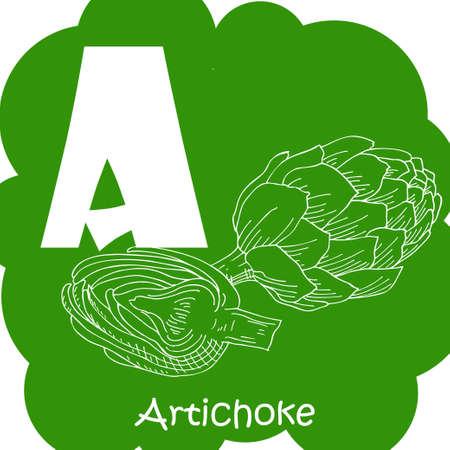 Vector vegetable alphabet for education. Illustration for kids. Letter A for Artichoke. Illustration