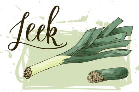 Vegetable food banner. Leek sketch. Organic food poster. Vector illustration Illustration