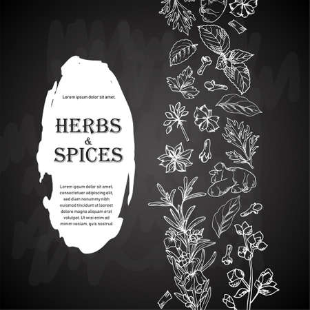 Card design with aromatic plants sketch. Hand drawn herbs and spices. Poster template. Vector illustration