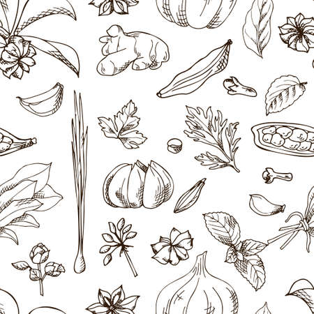 Seamless pattern with aromatic plants sketch. Hand drawn herbs and spices. Vector illustration.