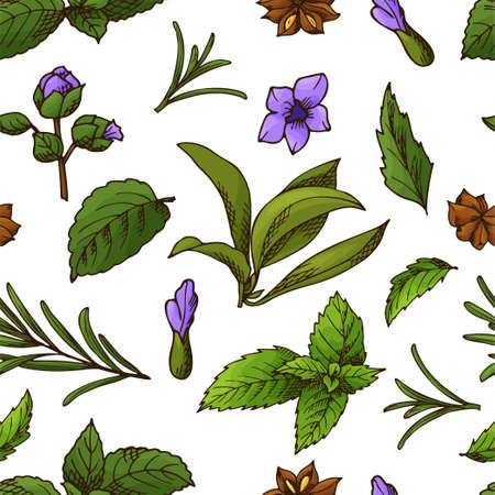 Hand drawn herbs and spices. Decorative background with sketch elements. Vector illustration.