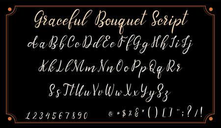 Handwritten calligraphy font. Vector alphabet. Hand drawn letters objects Иллюстрация