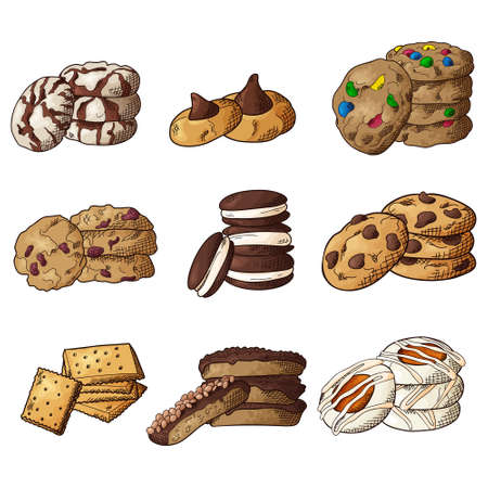 Set of different cookies on isolated white background. Traditional pastry. Vector illustration.