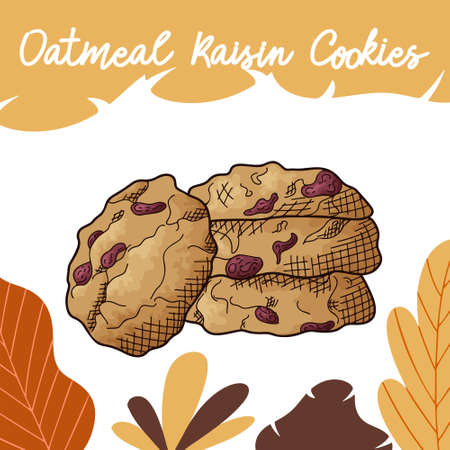 Hand drawn cookie in color on white background. Oatmeal raisin. Delicious food design. Vector illustration