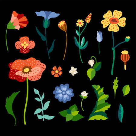 Set of wild flowers in flat stylized style. Colorful delailed drawing of meadow herbs. Botanical wildflowers and leaves isolated on background. Vector hand drawing illustration. Illusztráció