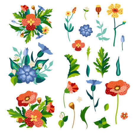 Set of wild flowers in flat stylized style. Colorful delailed drawing of meadow herbs. Botanical wildflowers and leaves isolated on background. Vector hand drawing illustration