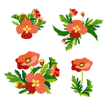 Set of Wild floral bouquets of poppies and cornflowers with green leaves in decorative flat style. Botanical natural herbs isolated on white background. Vector illustration