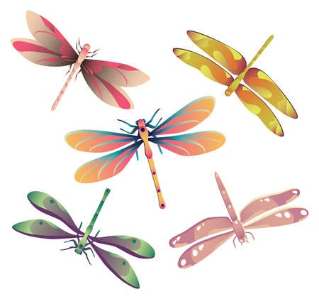 Vector illustration of five dragonflies.