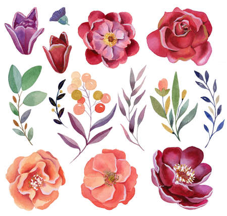 Watercolor flowers set - leaves, brunches, buds. Roses, peony.