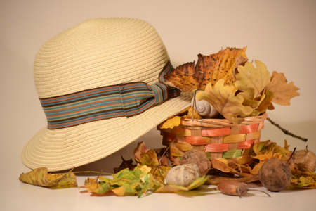 autumn colour: woman summer hat and autumn colour leaves and handmade bascket