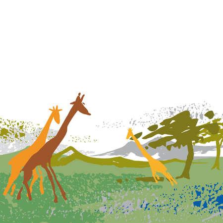 giraffe, countryside