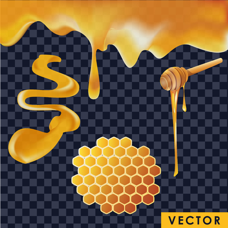Realistic honey in different shapes isolated