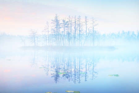 Ð¡rystal clear lake (bog) in a fog at sunrise. Symmetry reflections on the water, natural mirror, dark tree silhouettes. Epic cloudscape. Idyllic autumn scene. Concept art, fantasy, fairy tale
