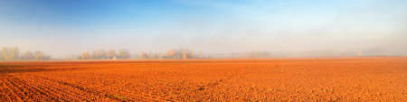 Agricultural plowed field and forest in a morning fog at sunrise. Clear blue sky. Golden autumn in Europe. Idyllic rural scene. Panoramic view, copy space