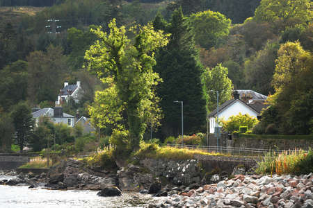 Small traditional country houses on the rocky shores of Ardrishaig, green trees close-up. Crinan canal, Scotland, UK. Travel destinations, architecture, sightseeing, landmarks, tourism, cruise