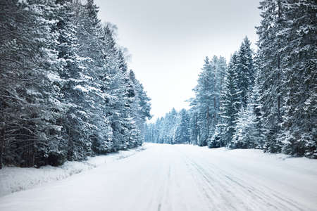 Snow-covered highway (asphalt road) through the coniferous forest after a blizzard. Lapland, Finland. Dangerous driving, climate change, global warming, ecology, environmental conservation Zdjęcie Seryjne