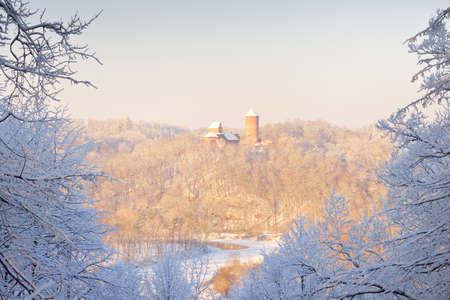 Panoramic aerial view of the old Turaida castle on a clear winter day, frame of snow-covered frosty trees after a blizzard. Gauja national park, Sigulda, Latvia. Landmarks, sightseeing, tourism